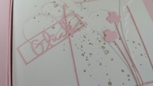 rosa box1